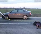 Accident mortal in Lugoj
