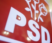 Vicepresedinte PSD reclama un 'haos general' in Guvern