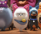 "Animatia ""The Secret Life of Pets 2"", pe primul loc in box office-ul nord-american"