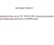 DOCUMENT PIERDUT HUSI !