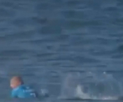 Imagini TERIBILE: Surfer ATACAT de doi RECHINI, in direct, in timpul unui concurs - VIDEO